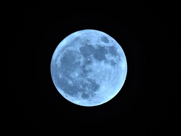 Photos: 十五夜満月