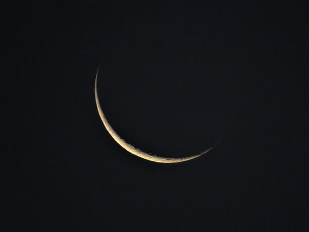 Photos: Dark Moon
