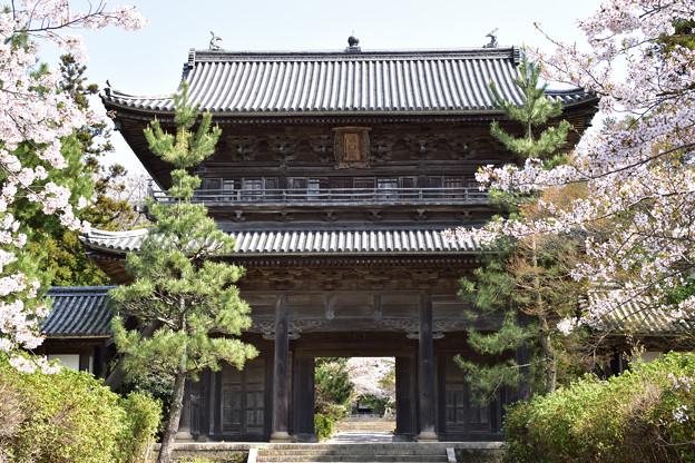 東光寺三門 1