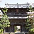 Photos: 東光寺三門 1