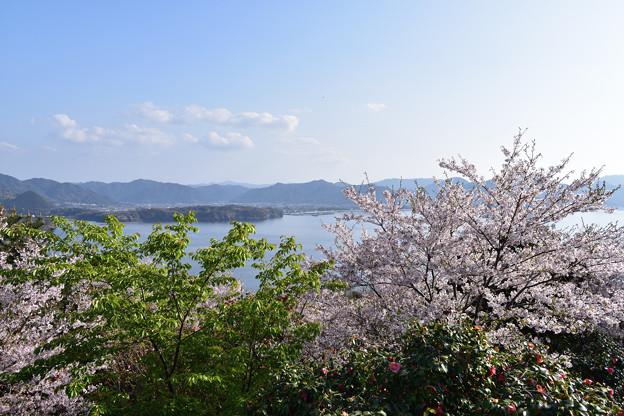 写真: 萩市内方面