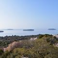 写真: 平らな島