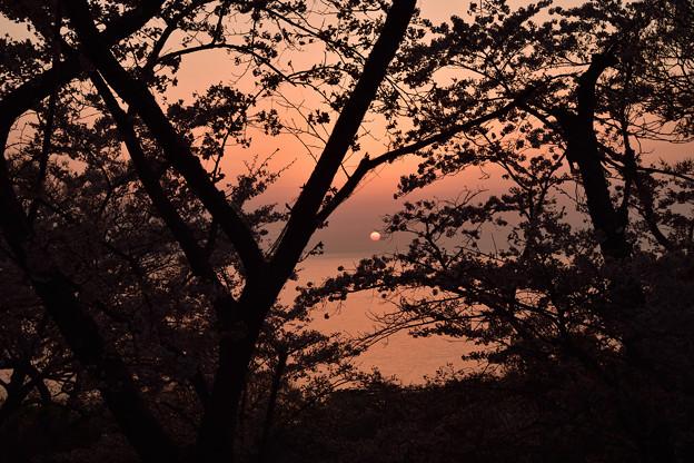 写真: 笠山の夕日