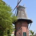 写真: 風車