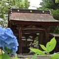 写真: 吉香神社神門