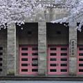 徴古館玄関