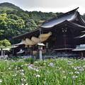 宮地嶽神社拝殿