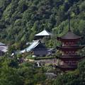 Photos: 要害山から