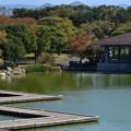 Photos: わくわく池