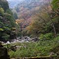 Photos: 三段峡の紅葉