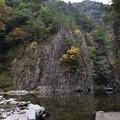 Photos: 黒淵渡船