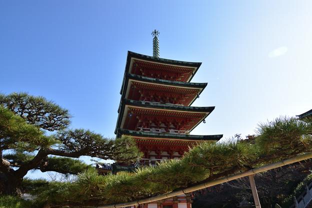 松と五重塔