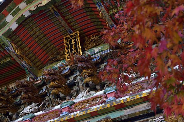 紅葉と孝養門