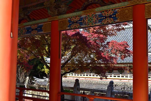 回廊と紅葉