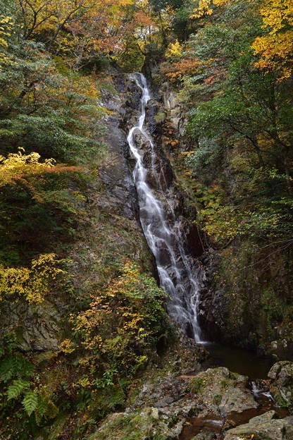 大龍頭の滝