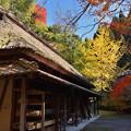 Photos: 木竹の家 匠