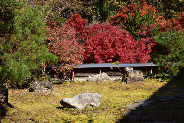 Photos: 庄屋の庭
