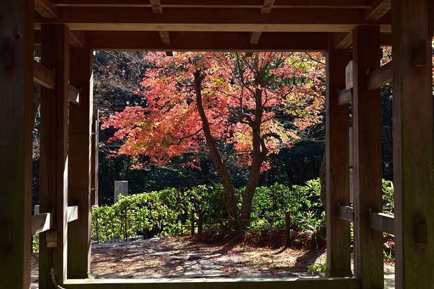 Photos: 山門から