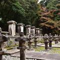 毛利家墓所の紅葉
