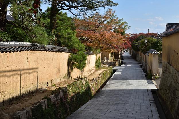 Photos: 古江小路
