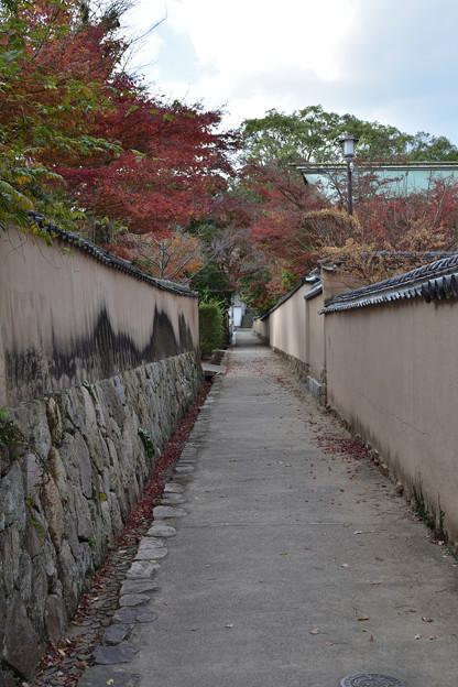 Photos: 横枕小路