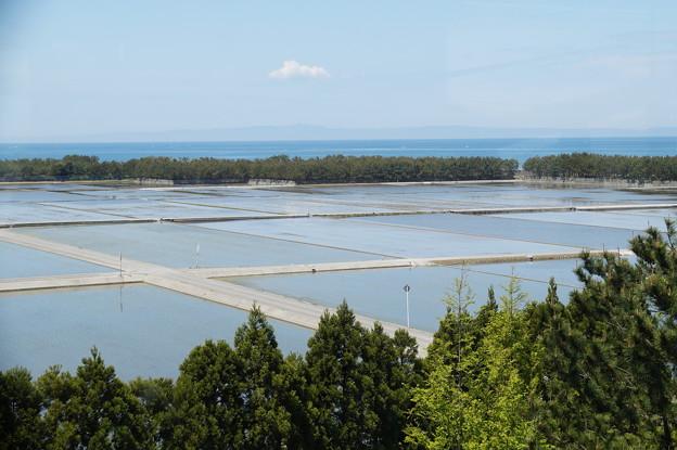 富山湾と水田