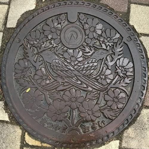 松山町(志田郡)