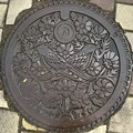 Photos: 松山町(志田郡)