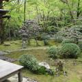 高山寺・石水院(庭園)1