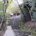 神護寺・楼門2