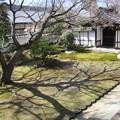 豊光寺・庭園3