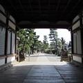 御香宮神社・割拝殿より参道