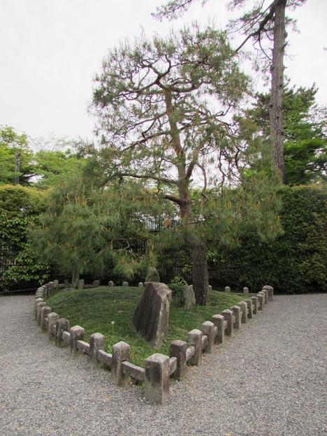 平等院・扇の芝2