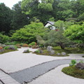 金戒光明寺・紫雲の庭1
