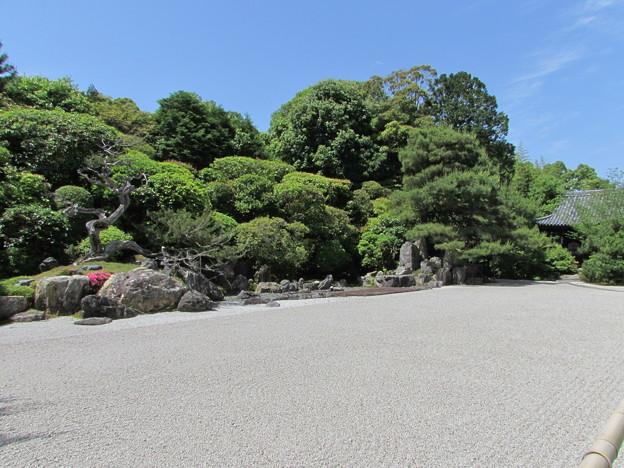 金地院・鶴亀の庭園2