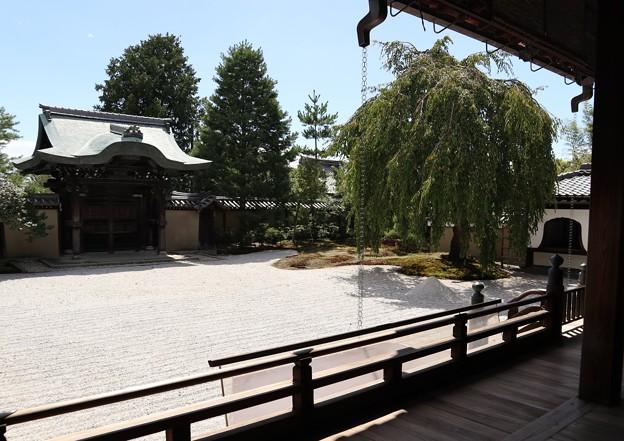 高台寺・方丈前庭1