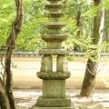 Photos: 気になる石塔