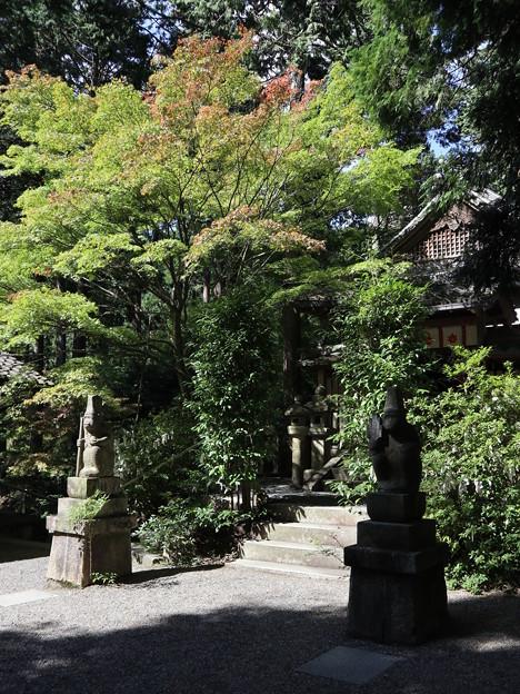 写真: 猿丸神社2
