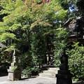 猿丸神社2
