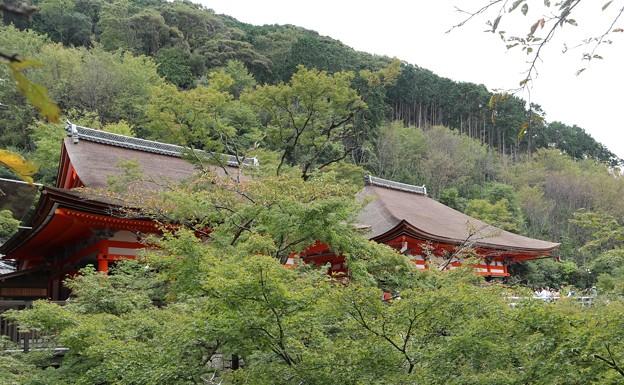 清水寺・阿弥陀堂(左)と奥の院(右)