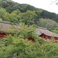 Photos: 清水寺・阿弥陀堂(左)と奥の院(右)