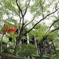 Photos: 清水寺・奥の院