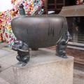 Photos: 八坂庚申堂のお猿さん1
