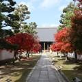 妙顕寺・大本堂1