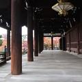 妙顕寺・大本堂4