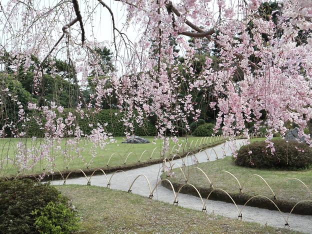 城南宮・桃山の庭9
