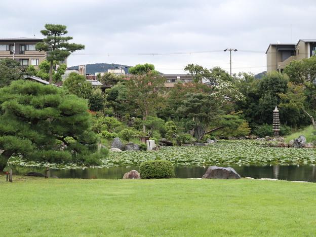 渉成園・お庭の眺望