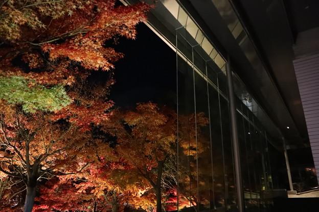 Photos: 平等院・鳳翔館8