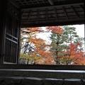 Photos: 法然院・山門(額縁)2