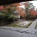 Photos: 法然院・白砂壇2